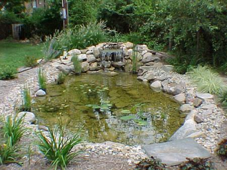 Small Pond With Waterfall Progressive Lawnscaping